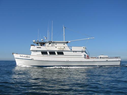 Islander sportfishing san diego ca for San diego sportfishing fish counts