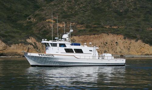 Pegasus sportfishing san diego ca for San diego private fishing charters