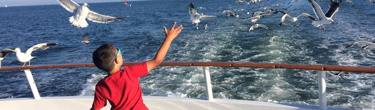 Fisherman 39 s landing san diego ca fishing charters for Fish counts san diego